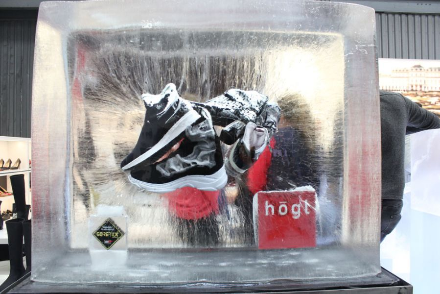 Hoegl Shoes Ice Cube